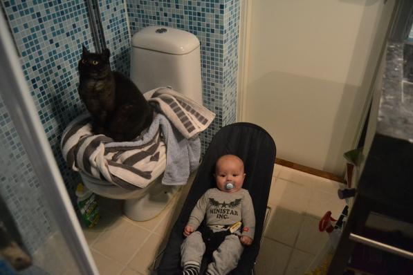 Katten Rut och B gör mig sällskap i badrummet
